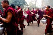 Молодые монахи спешат разнести чай во время учений Его Святейшества Далай-ламы в Сарнатхе, Индия, 15 января 2011. Фото: Тензин Чойджор (Офис ЕСДЛ)