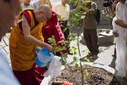 Его Святейшество Далай-лама сажает деревце во время церемонии освящения здания секретариата Кашага (кабинета министров) Центральной тибетской администрации. Дхарамсала, Индия. 2 июня 2011. Фото: Тензин Чойджор, ОЕСДЛ