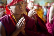 Тибетский монах слушает учения Его Святейшества Далай-ламы в монастыре Чиме Гастал Линг в Сидхбари. Штат Химачал-Прадеш, Индия. 4 апреля 2012. Фото: Тензин Чойджор (Офис ЕСДЛ)