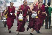 Монахи торопятся разнести чай более чем 30 тысячам паломников в последний день учений Его Святейшества Далай-ламы в монастыре Сера Чже. Билакуппе, штат Карнатака, Индия. 3 января 2014 г. Фото: Тензин Чойджор (офис ЕСДЛ)