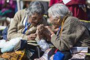 Во время учений Его Святейшества Далай-ламы в Шиллонге. Штат Мегхалая, Индия. 4 февраля 2014 г. Фото: Тензин Чойджор (офис ЕСДЛ)