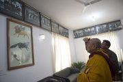 Его Святейшество Далай-лама осматривает фотогалерею во вновь открытом после реконструкции здании Тибетского парламента в эмиграции. Дхарамсала, Индия. 11 марта 2014 г. Фото: Тензин Чойджор (офис ЕСДЛ)