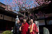 Его Святейшество Далай-лама и организаторы учений во время перерыва между сессиями. Коясан, Япония. 14 апреля 2014 г. Фото: Тибетский офис в Японии