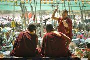 Монахи проводят философский диспут в восьмой день Калачакры. Лех, Ладак, штат Джамму и Кашмир, Индия. 10 июля 2014 г. Фото: Мануэль Бауэр.