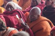 Один их слушателей учений Его Святейшества Далай-ламы в Молодежном буддийском обществе следит по тексту за комментариями Его Святейшества. Санкиса, штат Уттар-Прадеш, Индия. 1 февраля 2015 г. Фото: Тензин Чойджор (офис ЕСДЛ)