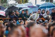 Во дворе главного тибетского храма слушатели учений Его Святейшества Далай-ламы по Джатакам прячутся от дождя под зонтами. Дхарамсала, Индия. 5 марта 2015 г. Фото: Тензин Чойджор (офис ЕСДЛ)