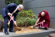 Его Святейшество Далай-лама сажает дерево в память о посещении Японской ассоциации врачей. Токио, Япония. 4 апреля 2015 г. Фото: Тензин Джигме