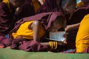 Монах укрывается накидкой от солнца во время учений Его Святейшества Далай-ламы по 18 коренным текстам и комментариям традиции Ламрим в монастыре Ташилунпо. Билакуппе, штат Карнатака, Индия. 24 декабря 2015 г. Фото: Тензин Чойджор (офис ЕСДЛ)