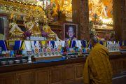 Его Святейшество Далай-лама перед алтарем в монастыре Ташилунпо. Билакуппе, штат Карнатака, Индия. 28 декабря 2015 г. Фото: Тензин Чойджор (офис ЕСДЛ)