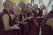 Тибетские монахи ожидают прибытия Его Святейшества Далай-ламы в храм Дрепунг Лачи на церемонию дарования полных монашеских обетов. Мундгод, штат Карнатака, Индия. 2 июля 2016 г. Фото: Тензин Чойджор (офис ЕСДЛ)