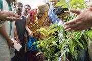 Его Святейшество Далай-лама в подаренном ему членами законодательного собрания штата Карнатака традиционном шелковом тюрбане майсур-пета сажает дерево на память о своем визите в Мундгод. Мундгод, штат Карнатака, Индия. 4 июля 2016 г. Фото: Тензин Чойджор (офис ЕСДЛ)
