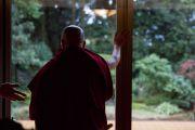 Его Святейшество Далай-лама любуется видом на сад перед обедом в храме Хигаси Хонгандзи. Киото, Япония. 9 ноября 2016 г. Фото: Джигме Чопхел