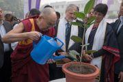 Его Святейшество Далай-лама поливает молодое деревце перед его посадкой во время 5-й ежегодной церемонии вручения дипломов в университете им. Амбедкара. Нью-Дели, Индия. 9 декабря 2016 г. Фото: Тензин Чойджор (офис ЕСДЛ)