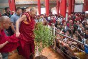 Его Святейшество Далай-лама прощается с публикой в зале, покидая Дрепунг Лоселинг по завершении конференции «Эмори–Тибет». Мундгод, штат Карнатака, Индия. 20 декабря 2016 г. Фото: Тензин Чойджор (офис ЕСДЛ)