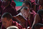 Юный монах читает текст во время первого дня учений Его Святейшества Далай-ламы, предваряющих посвящение Калачакры. Бодхгая, штат Бихар, Индия. 5 января 2017 г. Фото: Тензин Чойджор (офис ЕСДЛ)