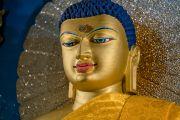 Статуя Будды Шакьямуни в храме Махабодхи. Бодхгая, штат Бихар, Индия. 15 января 2017 г. Фото: Тензин Чойджор (офис ЕСДЛ)