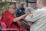 Визит в зоопарк Сан-Диего и встречи с индийцами и тибетцами