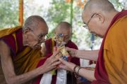 Ризонг Ринпоче совершает традиционные подношения Его Святейшеству Далай-ламе перед началом учений в монастыре Самтенлинг. Сумур, долина Нубра, штат Джамму и Кашмир, Индия. 14 июля 2017 г. Фото: Тензин Чойджор (офис ЕСДЛ)