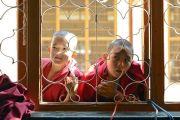 Юные монахи заглядывают в окно в надежде хоть краешком глаза увидеть Его Святейшество Далай-ламу во время учений в монастыре Ганден Лачи. Мундгод, штат Карнатака, Индия. 17 декабря 2017 г. Фото: Лобсанг Церинг.