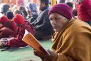Индийский монах читает текст во время учений Его Святейшества Далай-ламы, организованных по просьбе индийских буддистов. Бодхгая, штат Бихар, Индия. 5 января 2018 г. Фото: Лобсанг Церинг.